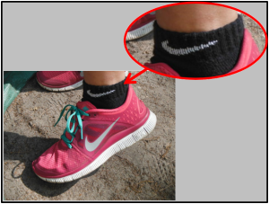Damning evidence: Pookey's picture confirms Butler was not wearing Under Armour socks