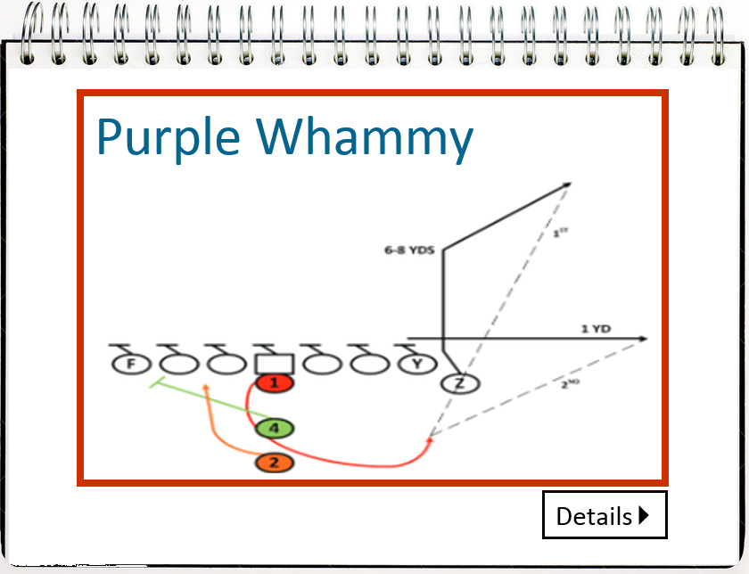 2016_Playbook_Purple_Whammy